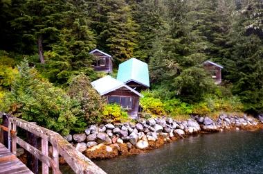 Baranof Bay Alaska © Nicole Geils