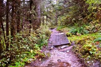 Baranof Trail © Nicole Geils