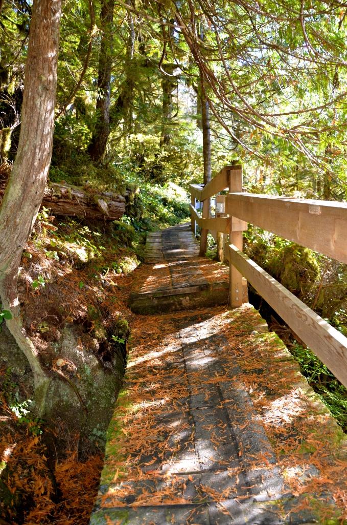 Bishop Bay Trail to Hot Springs