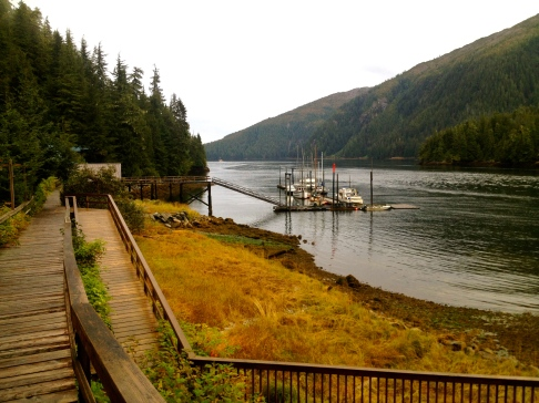 Baranof Bay Dock Alaska © Nicole Geils