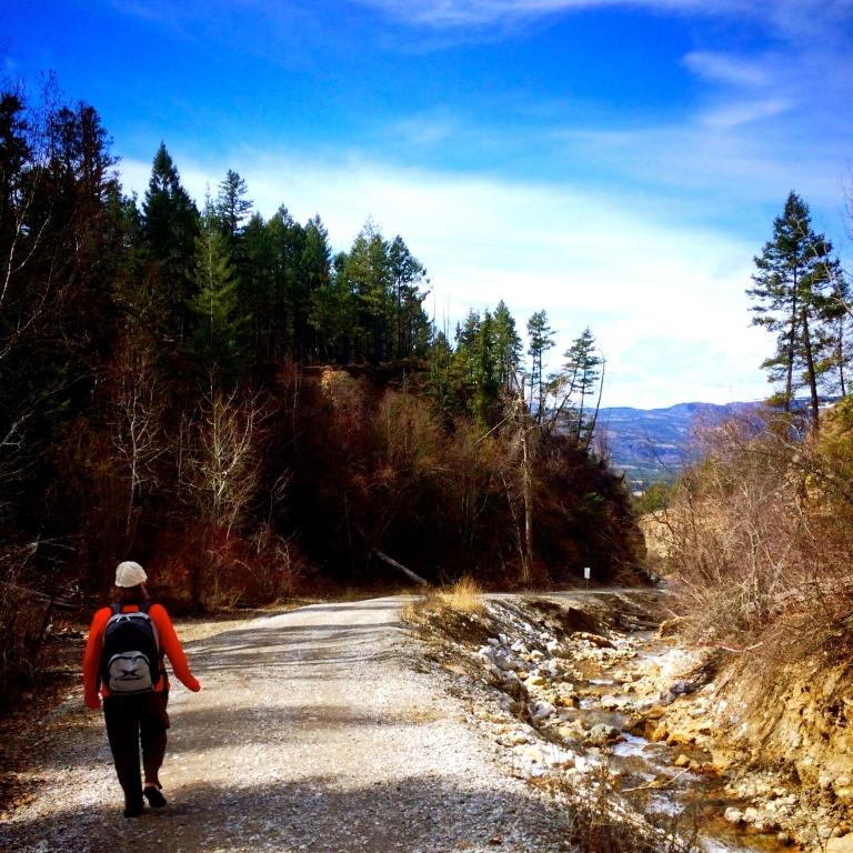 Mom Walking to the Warm Waterfall