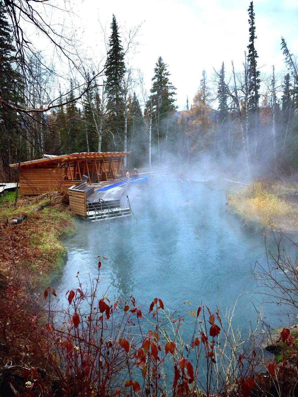Liard River Hot Springs © Nicole Geils
