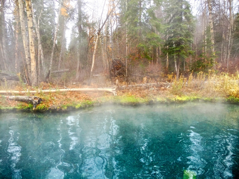 Liard River Hot Springs © Nicole Geils